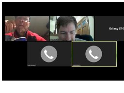 Online Social by RingCentral online meeting with the Roskopfs - AKA virtual Ice Cream Social